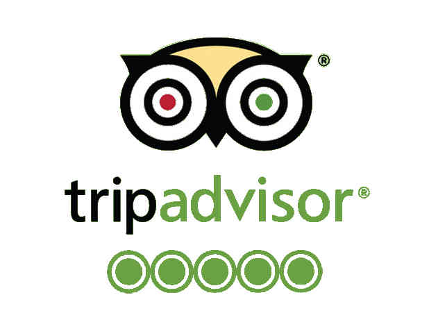 Trip advisor Canyon epic